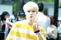 UP10TION 업텐션 || 160909 Music Bank || Wooshin우신