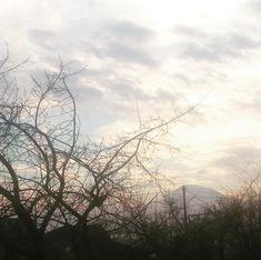 Ararat mnie podglada! :c #ararat #armenia #yerevan #expatlife #caucasianlife #winter #armenianwinter #foreignskyes #polishgirl