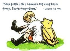 """Promise me you'll always remember: you're braver than you believe and stronger than you seem and smarter than you think."""" Winnie the Pooh A. All Breeds Of Dogs, Talking Animals, Pooh Bear, Eeyore, People Talk, Beautiful Creatures, Cool Words, Animal Rescue, Winnie The Pooh"""