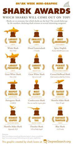 http://graphs.net/wp-content/uploads/2013/01/Shark-awards.jpg