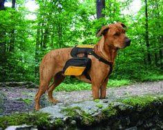 Kurgo 00028 Wander Pack Dog Backpack: Pet Supplies