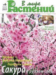 В мире растений №6 - (2013) - июнь http://eurostroylab.ru/zhyrnal/301-v-mire-rasteniy-6-2013-iyun.html http://letitlinks.ru/book/5135-v-mire-rasteniy-6-2013-iyun.html