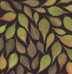 Explore horticultural art's photos on Flickr. horticultural art has uploaded 13805 photos to Flickr.