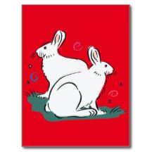 Cute white rabbit image 5c postcard