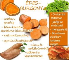 Életmód cikkek : Édesburgonya Zöldség és gyümölcsök hatásai