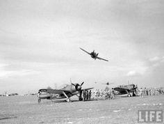 Low flying Brewster Buffalo's,circa 1941.Possibly RAF Sembawang.Singapore.