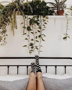 Happiness in bloom. @branchabode #HappySocks #HappinessEverywhere