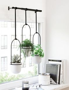 Fintorp Ikea, Window Plants, Indoor Window Planter, Hanging Pots, Indoor Hanging Plants, Indoor Plant Decor, Succulent Hanging Planter, Wall Mounted Planters Indoor, Indoor Plant Shelves