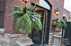 Junior League of Hamilton-Burlington's annual Holiday House Tour of Distinctive Homes is a not to be missed holiday event! Front Entrances, Holidays And Events, House Tours, Hamilton, Jr, Holiday Decor, Plants, Christmas, Noel