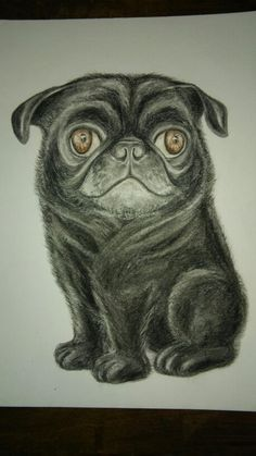 Pet portraits make great gifts or personal keepsakes, message Mary rmcjbreedon@rogers.com Keepsakes, Caricatures, Pet Portraits, Great Gifts, Mary, Pets, Canvas, Animals, Souvenirs