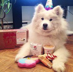 HAPPY BIRTHDAY CUITIE!