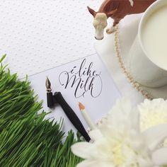 Calligraphy by Anna Liepina  i like milk    #каллиграфия #люблюкаллиграфию #calligraphy