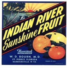 Vero Beach Florida Indian River Lundeen Orange Citrus Fruit Crate Label Print