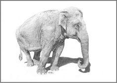 Mintra Elephant, Animals, Art, Art Background, Animales, Animaux, Kunst, Elephants, Animal
