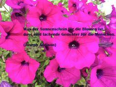 Lachen ist wie Sonnenschein....  Lachen reduziert Stress… und ist der kürzeste Weg zwischen zwei Menschen… http://www.heikeholz.de/lachen-ist-wie-sonnenschein/