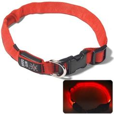 Nite Ize Dawg Collar is such a wonderful product. It is a soft red glow that can be easily seen but is not harsh on the eye. My friend has a black dog that goes with us to Montrose and it is so much easier to see her dog! Plus her dog thinks she's pretty hot stuff when she gets to wear it. Great for camping or any low-lit excursions!