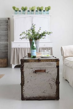 old trunk as coffee table.  love the rustic colors