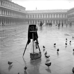 Camera in St. Mark's Square, Venice, 1962  Explore the World with Travel Nerd Nici, one Country at a Time. http://TravelNerdNici.com