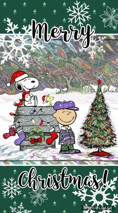 Peanuts Thanksgiving, Peanuts Christmas, Charlie Brown Christmas, Charlie Brown And Snoopy, Christmas Greetings, Christmas Fun, Snoopy Images, Snoopy Pictures, Snoopy Wallpaper