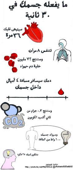 ماذا يحدث في جسمك خلال ٣٠ ثانية  http://azzamaldakhil.com/azzam/2013/06/02/%d9%85%d8%a7%d8%b0%d8%a7-%d9%8a%d8%ad%d8%af%d8%ab-%d9%81%d9%8a-%d8%ac%d8%b3%d9%85%d9%83-%d8%ae%d9%84%d8%a7%d9%84-%d9%a3%d9%a0-%d8%ab%d8%a7%d9%86%d9%8a%d8%a9/
