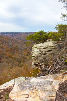 Things to do in North Alabama with Kids: Bucks Pocket State Park