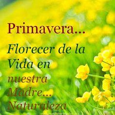 · Primavera... Florecer de la Vida en nuestra  Madre Naturaleza ·                                                                                                                                                     Más