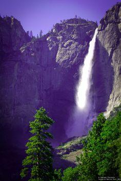 Yosemeti