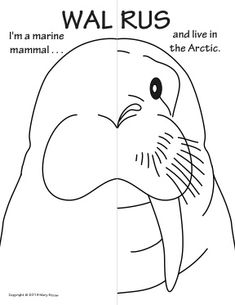Sea Creatures Symmetry Activity Coloring Pages. Math with Craft-Creative Writing option.