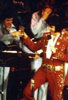 Elvis Presley Posters, Elvis Presley Concerts, King Of Music, Hampton Roads, Graceland, Horror Art, American Singers, The Hamptons, Rock And Roll