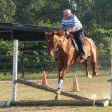 Harry still rides!