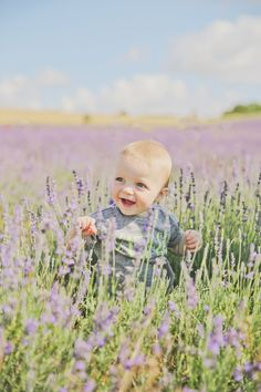 Real Families: Sun in the Lavender Fields By Victoria Mitchell