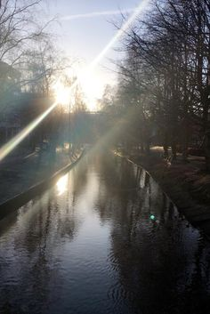 #sweden #sverige #göteborg #natur