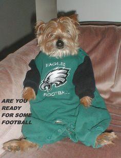 Elvis is ready #Philadelphia #Eagles #Football