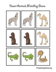 Preschool Printables Search results for desert  Preschool