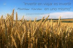 This image is from the public domain. Wheat Fields, Vineyard, Art Prints, Public Domain, Investing, Traveling, Photography, Outdoor, Image