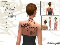 Free birds women - Collection complète