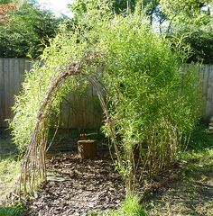 how to build a willow den. this would be ideal for our backyard and we *have* a willow tree. I wonder if we could just cut down the whips in the fall and plant them? remind me in November to try (it can't hurt to try!)