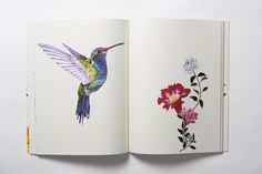 A welcome reprieve from the bustle of day-to-day urban reality, illustrator Daisy Fletcher's Birdtopia comprises over 70 coloring pages that feature the whimsical wonders of the natural world. The black and white depictions span all sorts of ethereal earthly environments, from forests to tropics, with feathered creatures perching, hovering, or flying across every spread. The imagery is at once organic and surreal, inviting readers into the otherwise concealed pockets of paradise that house…