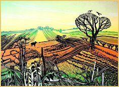 Field Visitor Linocut By Rob Barnes Art And Illustration, Botanical Illustration, Landscape Prints, Landscape Art, Linocut Prints, Art Prints, Block Prints, National Art, Wood Engraving