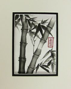 Japanese bamboo drawing - Google Search