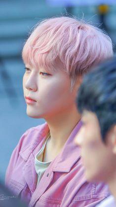 Seungkwan from Seventeen Woozi, Wonwoo, Jeonghan, Hip Hop, Choi Hansol, Vernon Hansol, Boo Seungkwan, Seventeen Debut, Seventeen Wallpapers