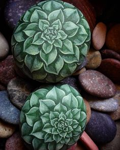 succulent rocks, perfect idea for people who don't have time for plants.