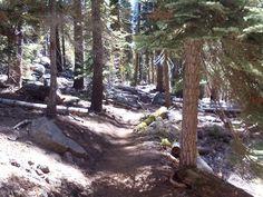 Lakes trail Sequoia NP