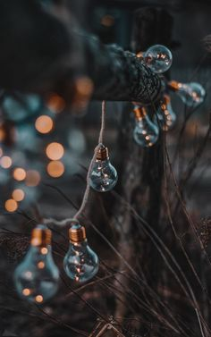 Phone Backgrounds, Wallpaper Backgrounds, Iphone Wallpaper, Winter Wallpaper, Christmas Wallpaper, Aesthetic Pastel Wallpaper, Aesthetic Wallpapers, Beautiful Nature Wallpaper, Christmas Aesthetic