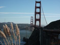 San Francisco, CA. There's a lot of really neat places here, not to mention the bay and the Golden Gate Bridge