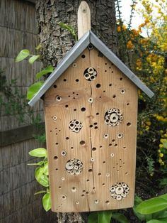 bee hotel more