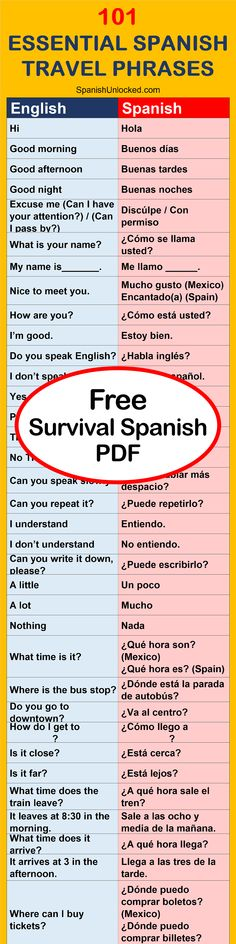 Common Spanish Phrases for Travel: This free pdf of basic Spanish phrases for travel pdf can help you learn Spanish faster before you travel! Learn Spanish Free, Learn To Speak Spanish, Learn Spanish Online, Learn English, Spanish Vocabulary, Spanish Language Learning, Teaching Spanish, Simple Spanish Words, Useful Spanish Phrases