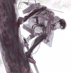 Levi Ackerman l Attack on Titan l Shingeki no Kyojin