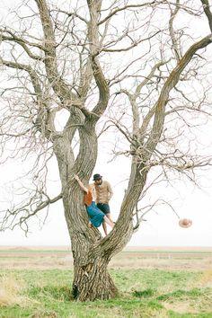 great tree climbing shot from Ciara-Richardson.com