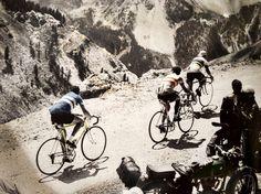 Stan Ockers, Federico Bahamontes y Roger Walkowiak escalan el Izoard / 1956